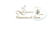 Lilium Pasticceria al Santo